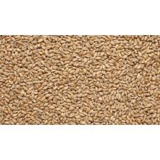 Солод Wheat (Пшеничный), Россия